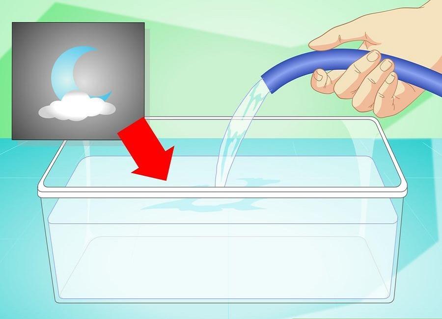 تمیز کردن تنگ ماهی