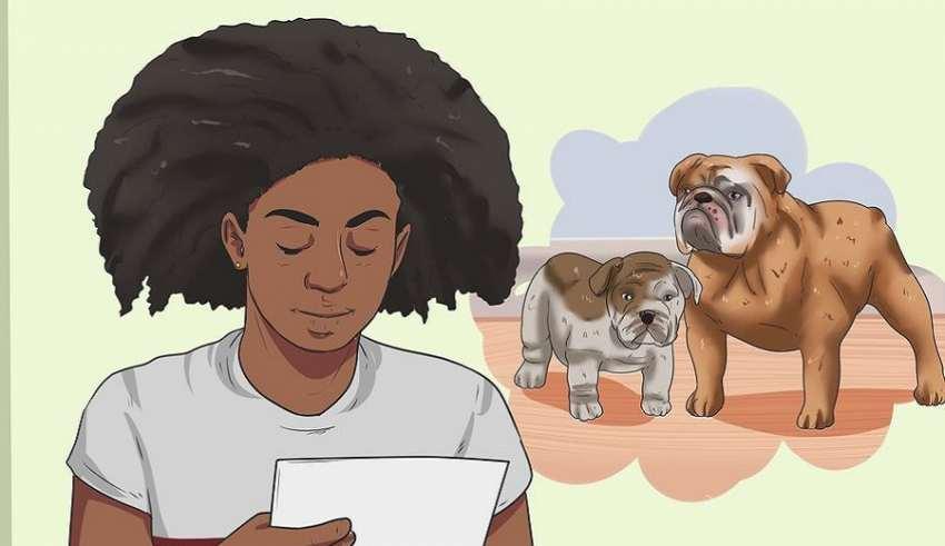 تشخیص سن سگ