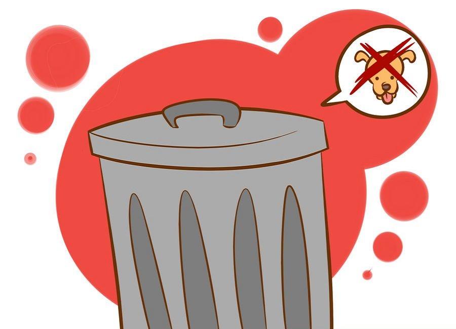 خوردن آشغال توسط سگ