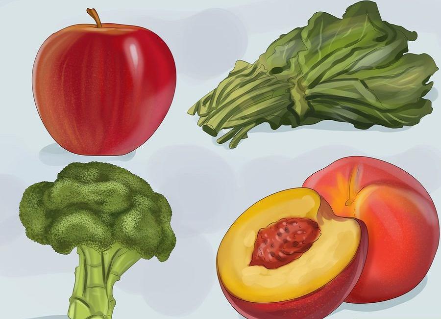 میوه برای طوطی