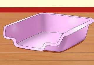آموزش توالت به همستر