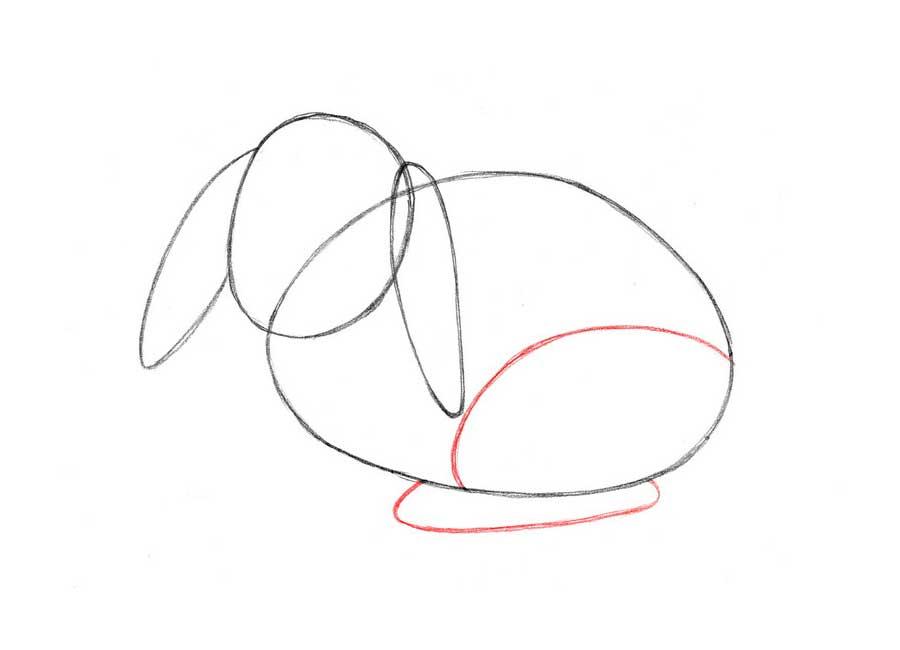نقاشی خرگوش برای کودکان