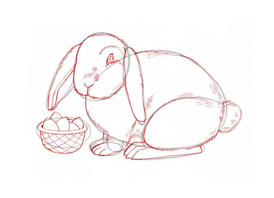 الگوی خرگوش نمدی