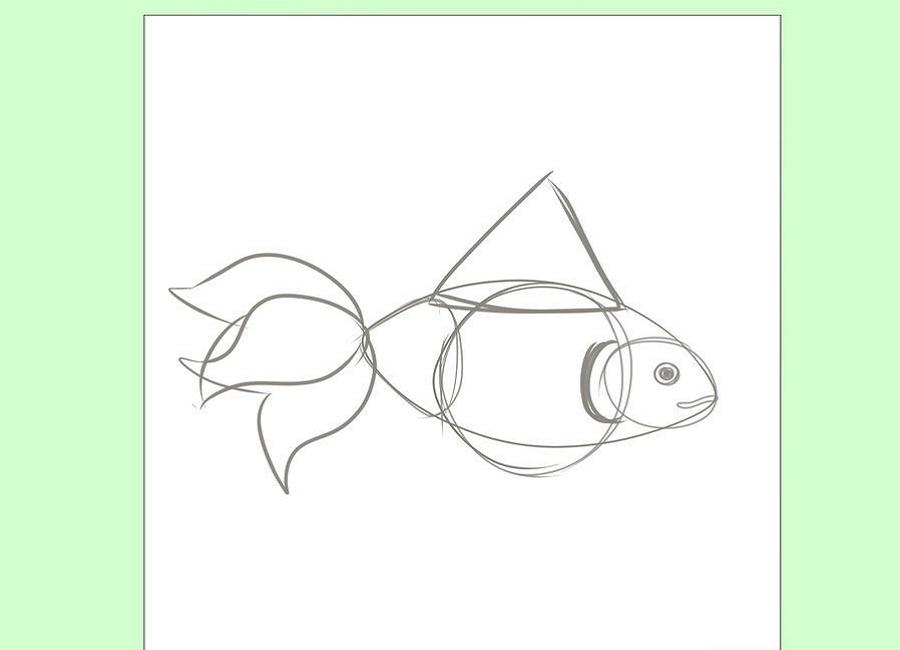 نقاشی قشنگ ماهی قرمز