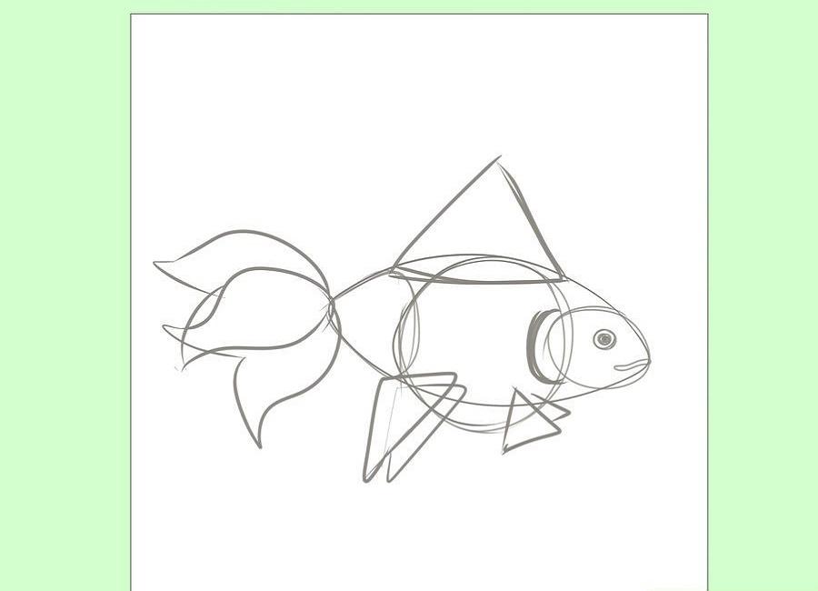 نقاشی راحت ماهی قرمز
