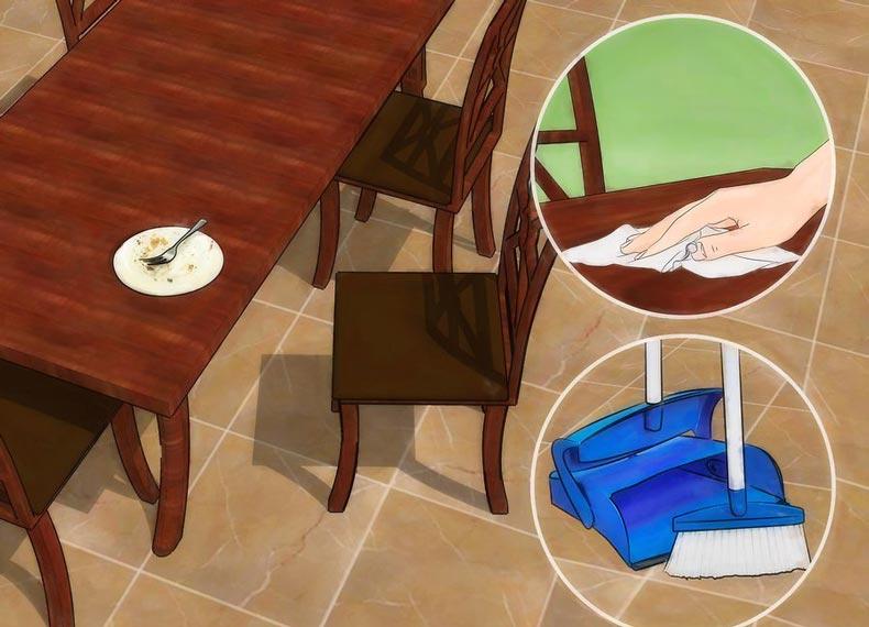 تمیز کردن خانه ضد سوسک