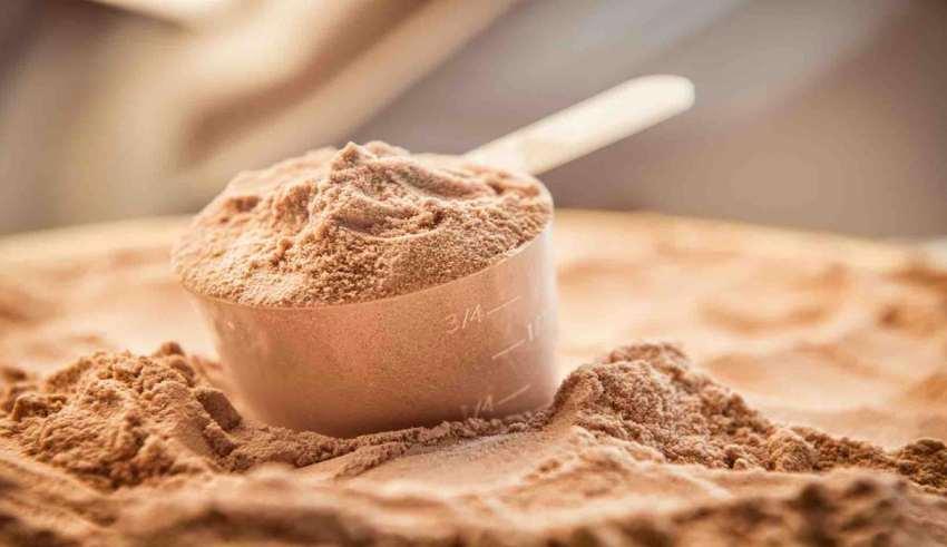 مصرف پروتئین وی