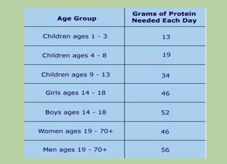 چقدر پروتئین مصرف کنیم