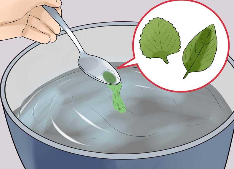 سینوزیت درمان گیاهی