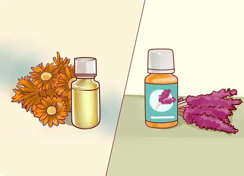 داروی گیاهی برای جوش زیرپوستی
