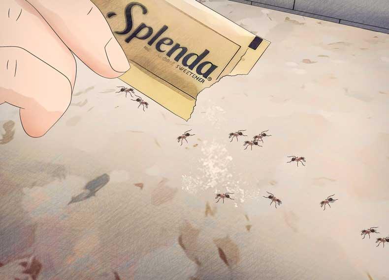 سم مورچه کش