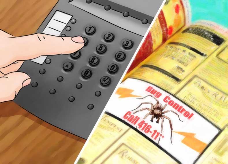 از بین بردن قطعی عنکبوت