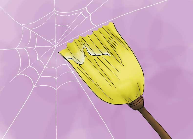 از بین بردن عنکبوت