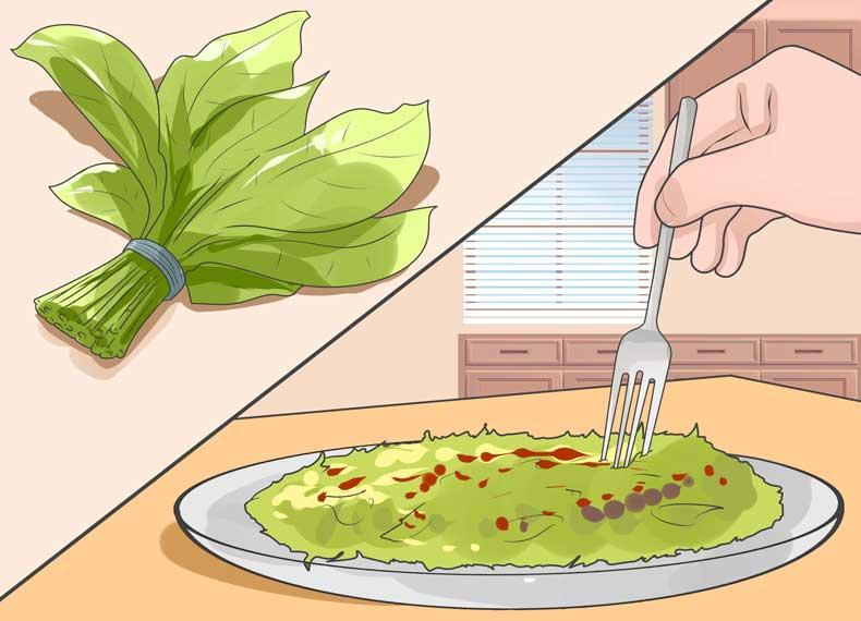 ناهار گیاهخواران