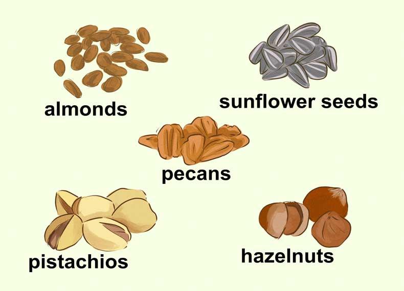 موادغذایی غنی از ویتامین E
