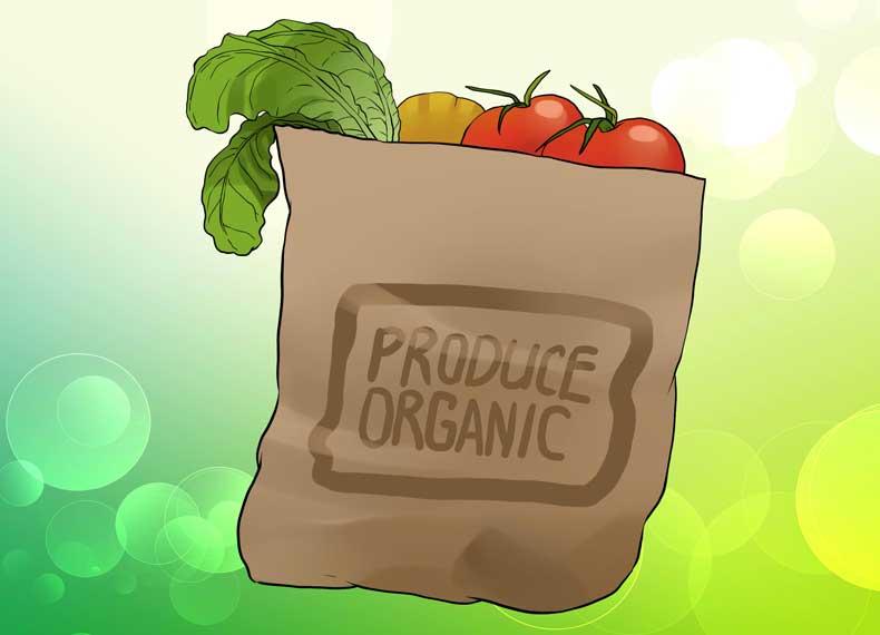 سم زدایی با موادغذایی ارگانیک
