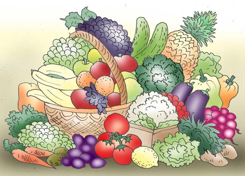 برنامه غذایی برای دیابت