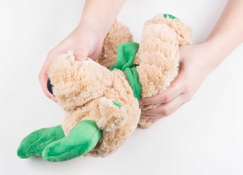 تمیز کردن عروسک خرس