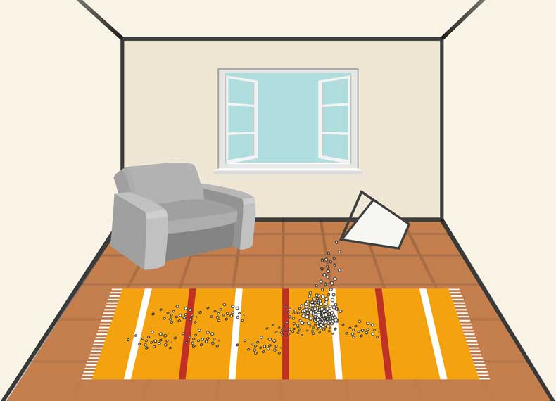 از بین بردن بوی خانه