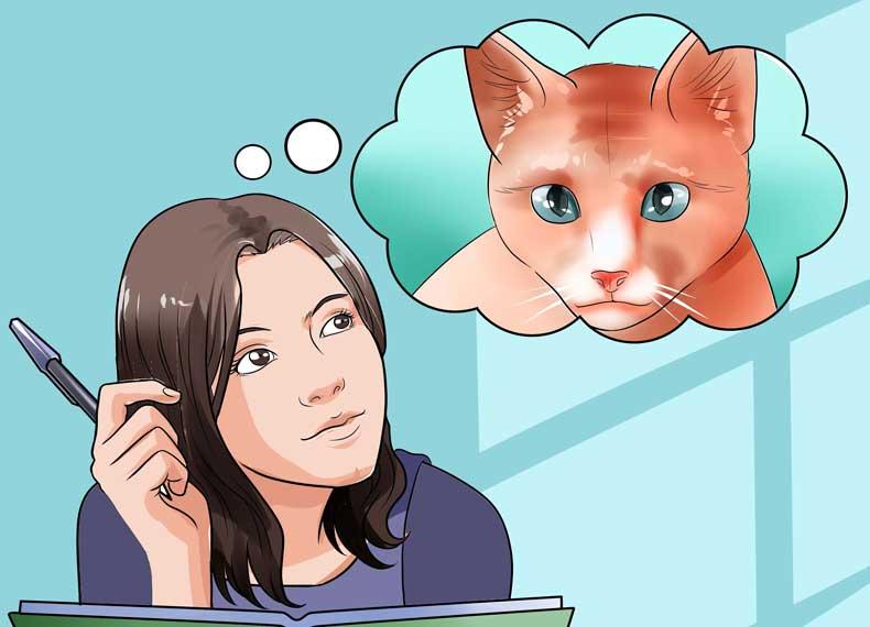 درمان خانگی دیدن خواب بد