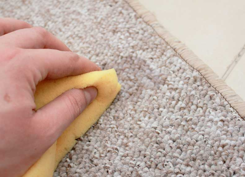 لکه زدایی فرش