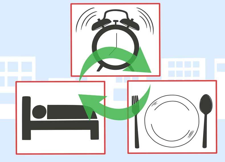تنظیم خواب و غذا