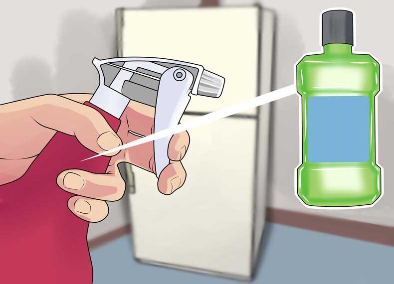 از بین بردن رشک شپش