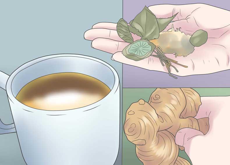 گیاهان دارویی برای کبد