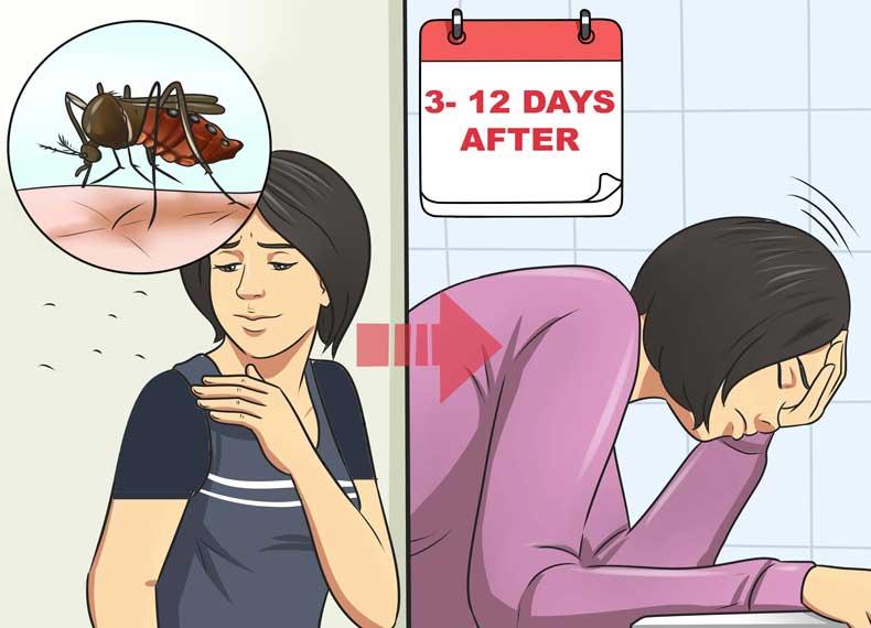 علت ابتلا به ویروس زیکا
