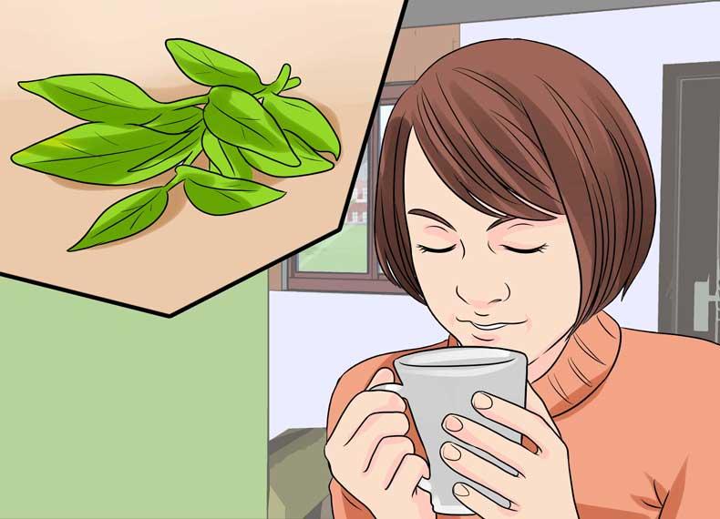 گیاهان از بین برنده التهاب